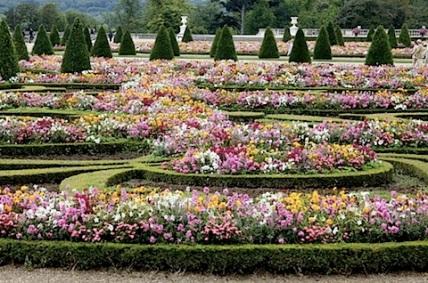 flores_jardim.jpg