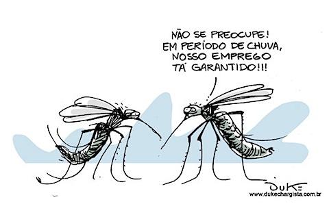 charge-dengue.jpg